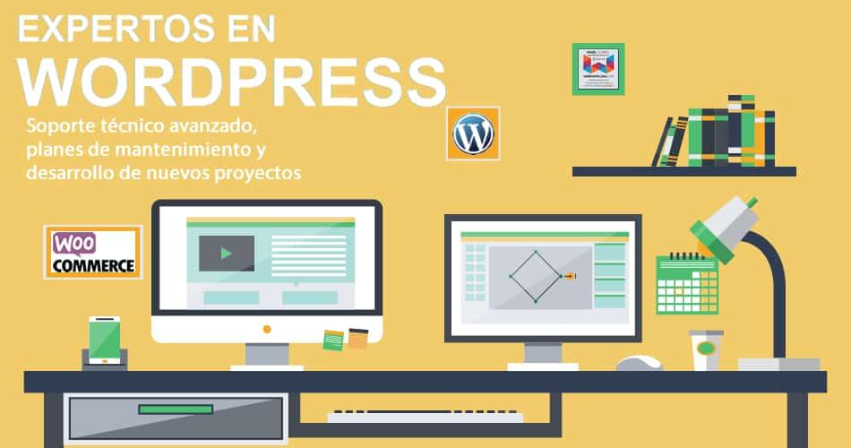 Expertos en WordPress en Pamplona y Navarra