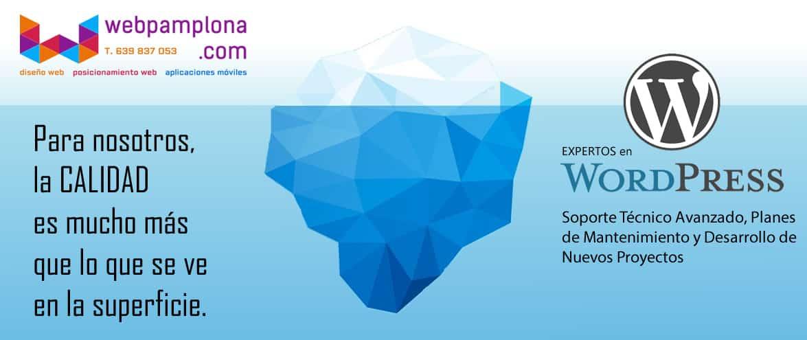 iceberg-webpamplona-calidad-de-servicio