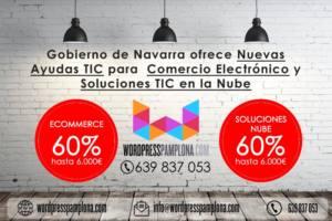 Subvenciones web TIC de Gobierno de Navarra 2017