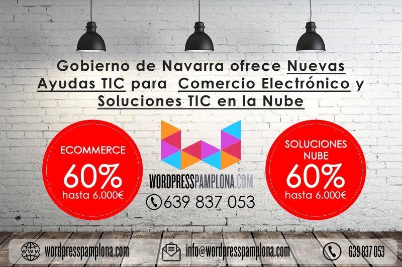 Subvenciones para la creación de tiendas Online 2017 de Gobierno de Navarra